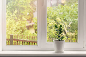 energy-efficient replacement windows